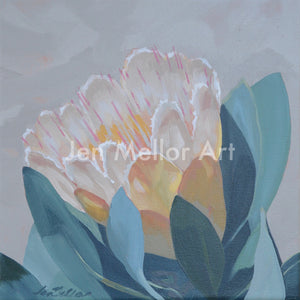 Protea Bloom