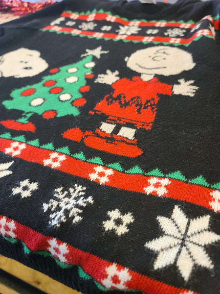 Peanuts collectable Charlie Brown and Snoopy Christmas Sweater