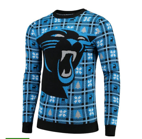 Carolina Panthers Big Logo Sweater