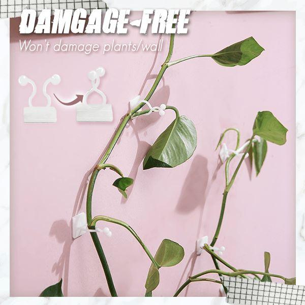 Plant Wall Climbing Fixing Clips (10PCS/50PCS)