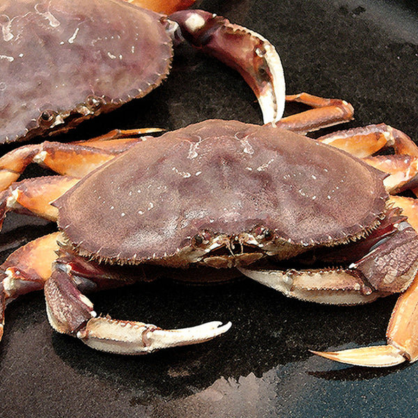 Wild Pacific Dungeness Crab Meat 115g