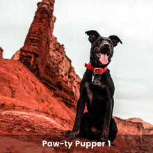 Load image into Gallery viewer, Pawfect Preset Collection™ - Mobile