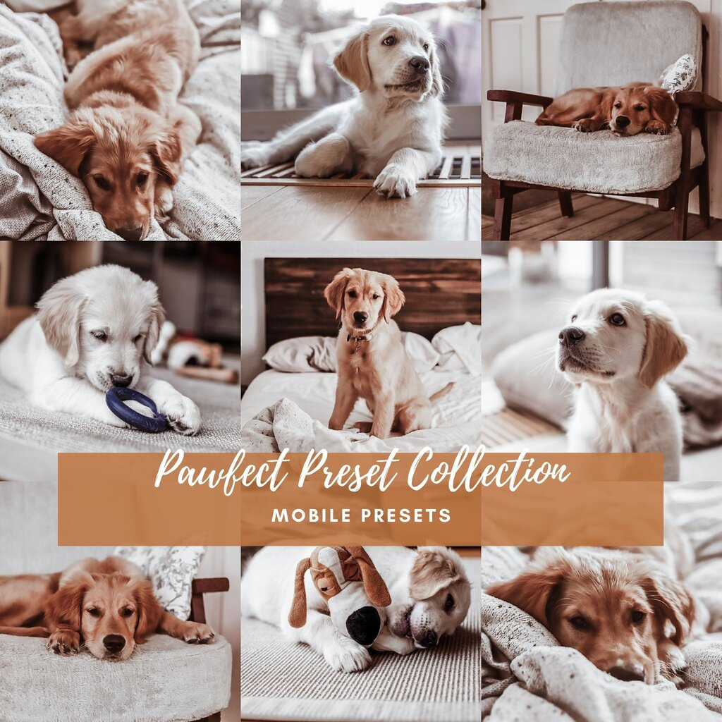 Pawfect Preset Collection™ - Mobile