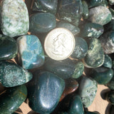 Bloodstone Tumbled Medium