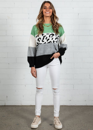 Wild World Sweater - Mint Leopard