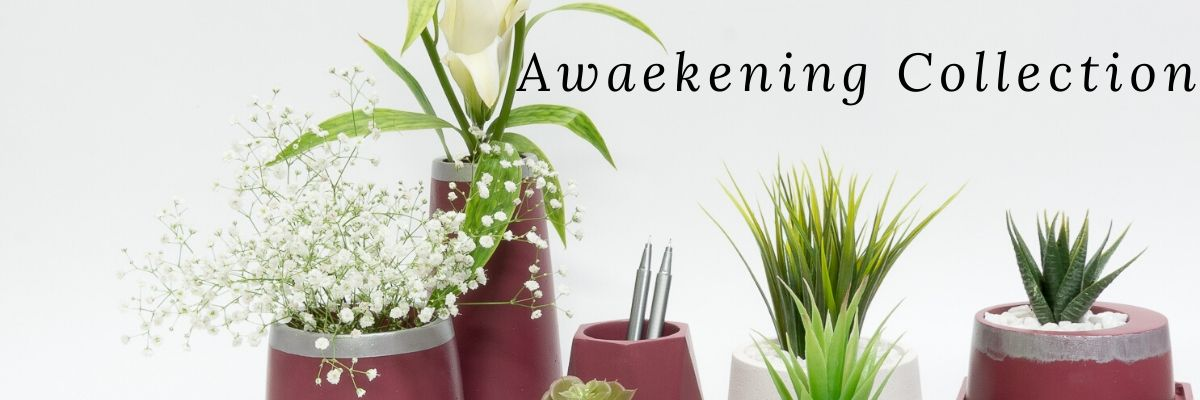 Awakening Collection