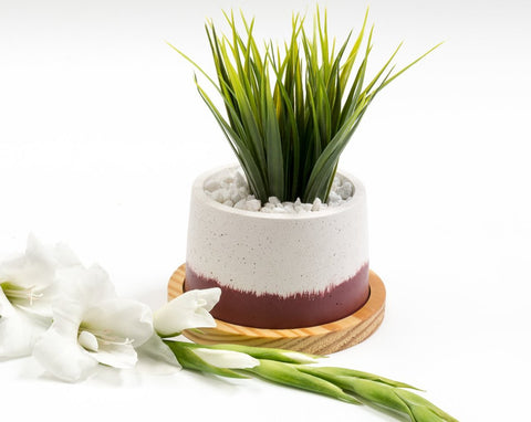 Concrete Cavern Planter in Awakening, Asian Paints<br> Colour of the Year 2019 - Eliteearth