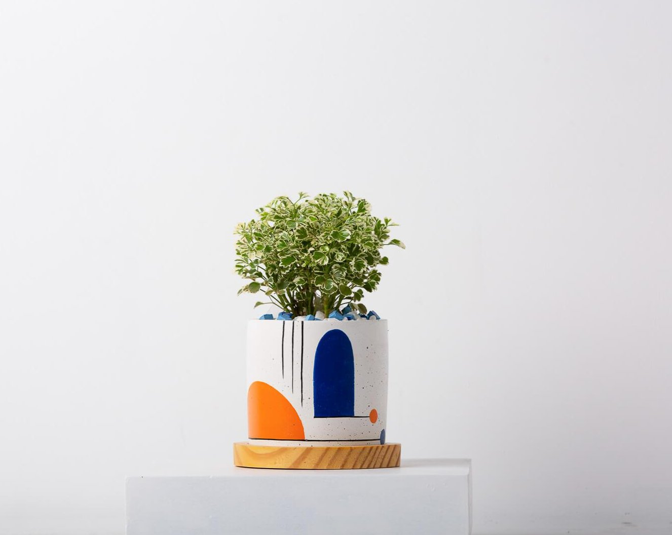 Concrete Circlet Planter - Avant-Garde Collection-Eliteearth
