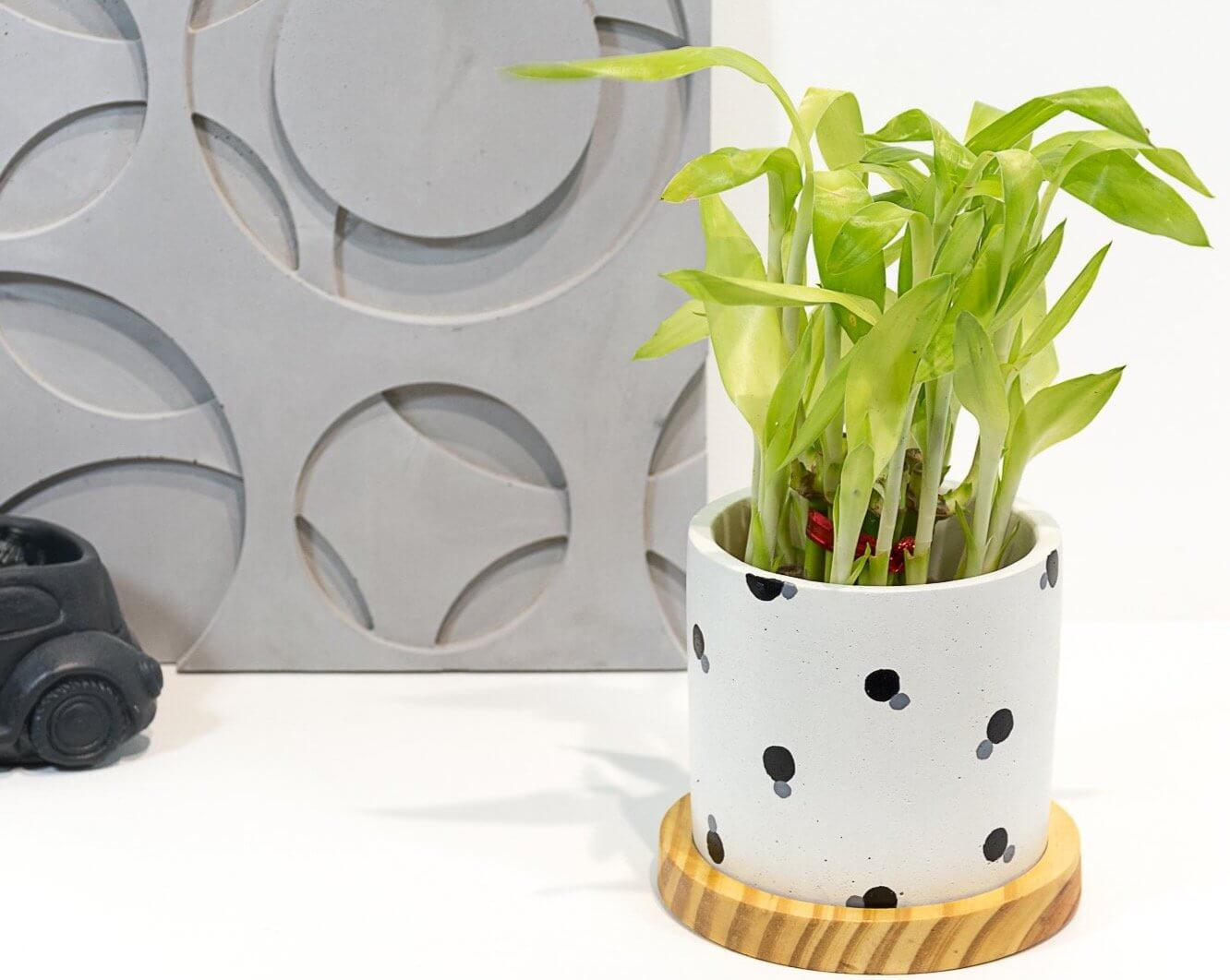 Concrete Circlet Planter - Eclipse Collection - Eliteearth