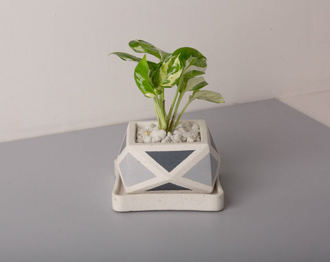 Concrete Crystal Planter - Grey Invertrix Collection - Eliteearth