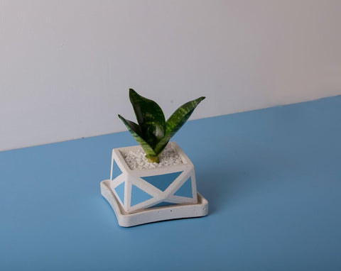 Concrete Crystal Planter - Blue Invertrix Collection - Eliteearth