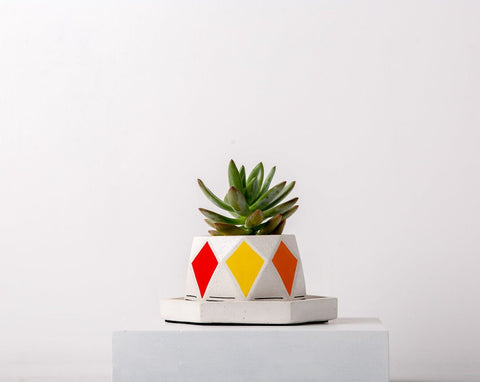 Concrete Diamante 1 Planter-Avant-Garde Collection-Eliteearth