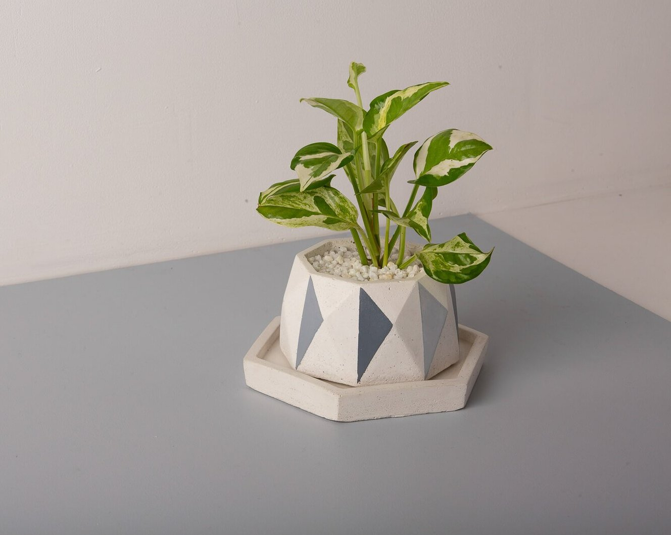 Diamante Kite Planter - Grey Invertrix Collection - Eliteearth