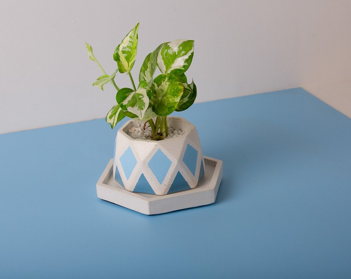 Concrete Diamante Planter - Blue Invertrix Collection - Eliteearth