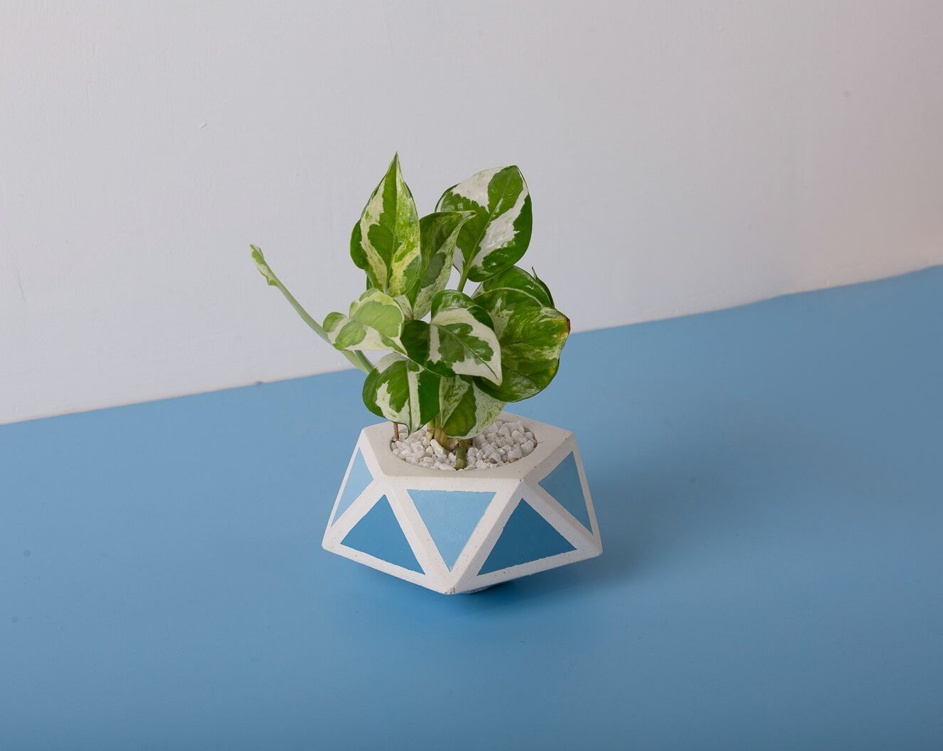 Concrete Floater Planter - Blue Invertrix Collection - Eliteearth