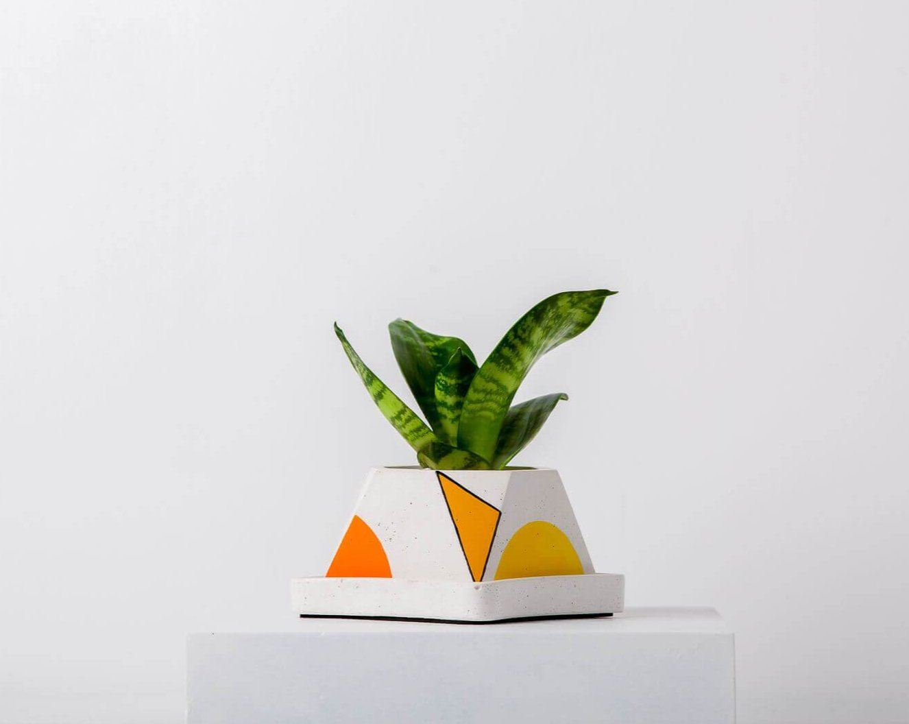 Concrete Glittery Bowl Planter-Avant-Garde Collection-Eliteearth