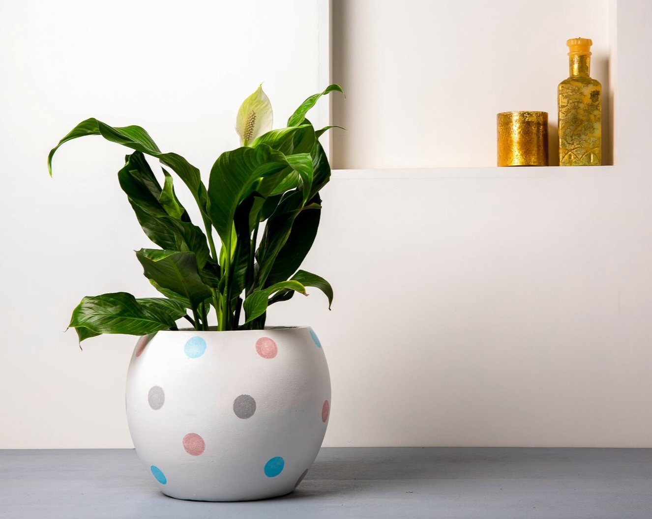 Concrete Meteor Planter White/Multi Polka - Handpainted Collection-Eliteearth