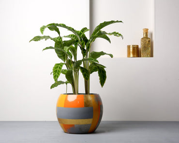 Concrete Meteor Planter - Suryaasta Collection-Eliteearth