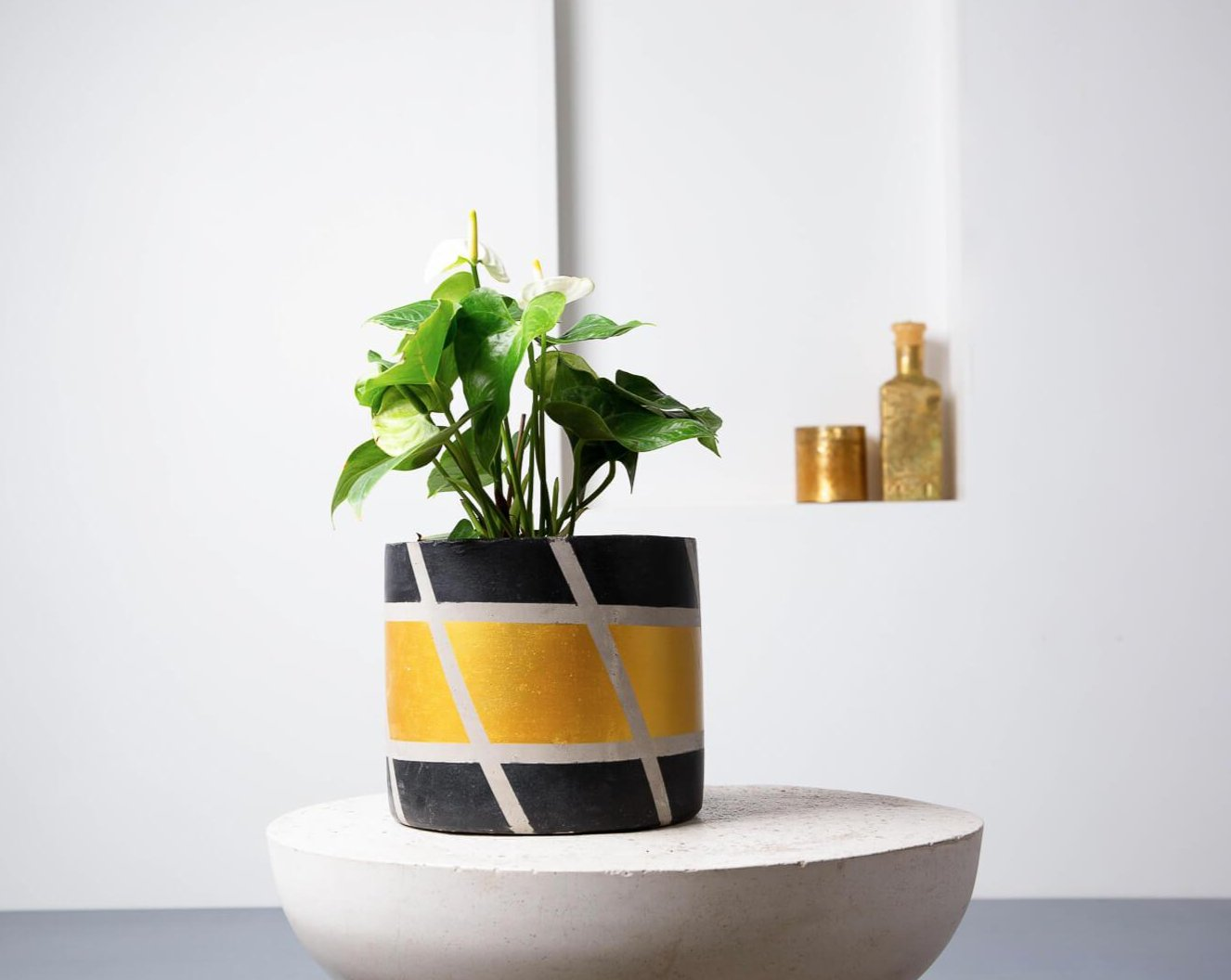 Concrete Mid-Century Planter Black/Gold- Handpainted Collection-Eliteearth