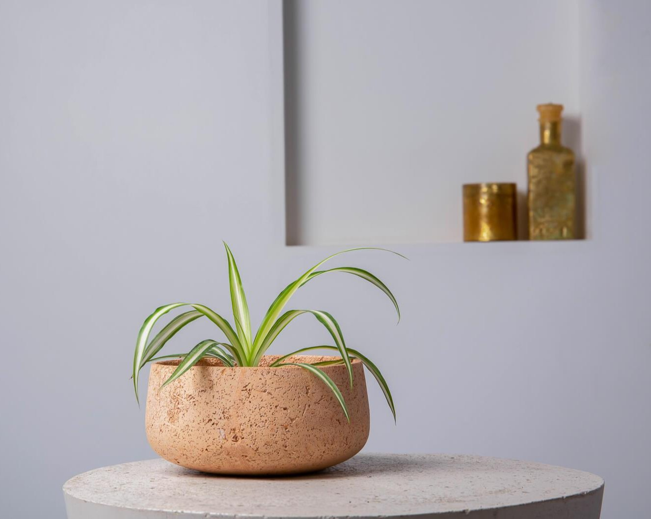 Concrete Modern Vessel Planter Blush Pink -  Handpressed Collection-Eliteearth