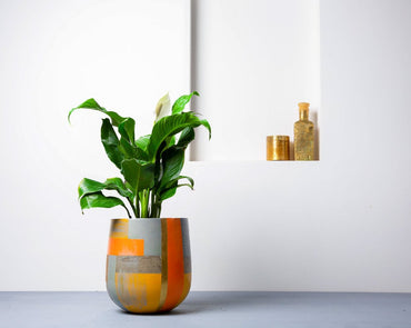 Concrete Ovate Planter - Suryaasta Collection-Eliteearth