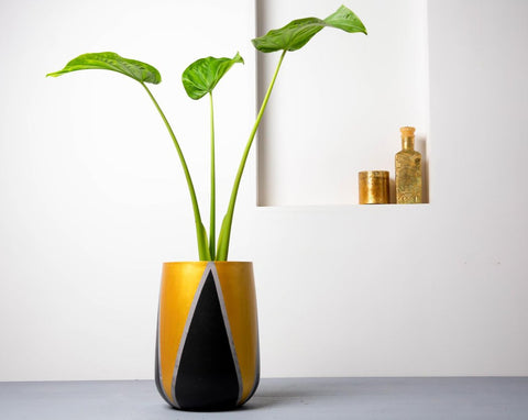 Concrete Parabola Planter Black/Gold - Handprinted Collection-Eliteearth
