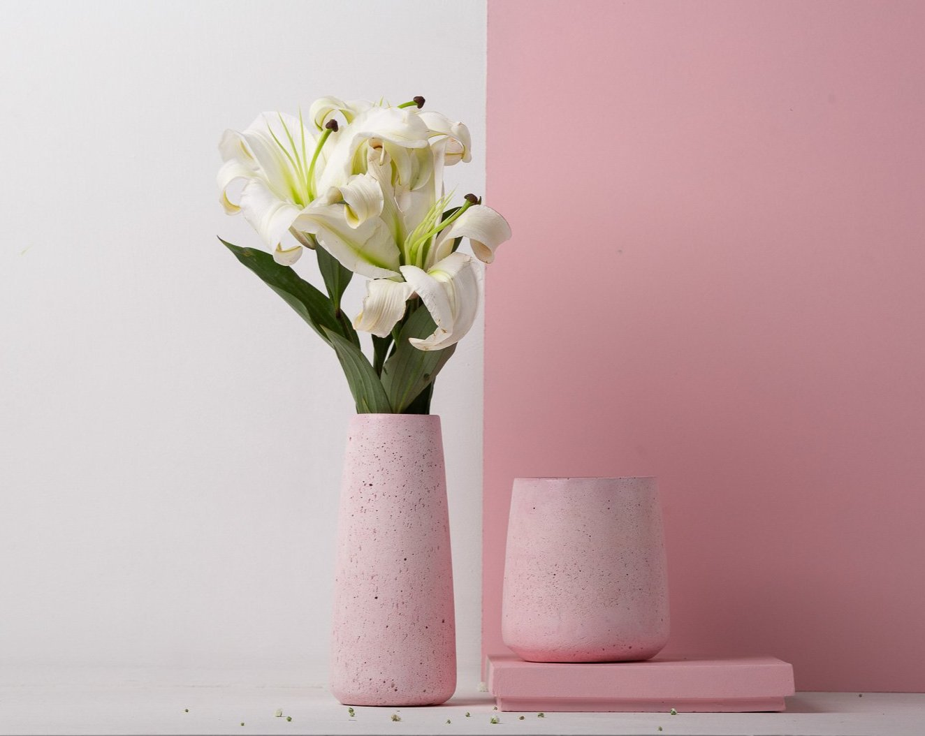 Concrete Tinted Vase Duo in Pink - Vazo Collection - Eliteearth