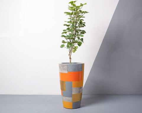 Concrete Umbra Planter - Suryaasta Collection-Eliteearth