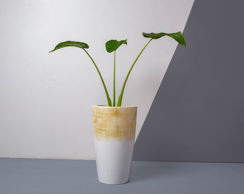 Concrete Umbra Planter White/Gold Strokes - Handpainted Collection-Eliteearth