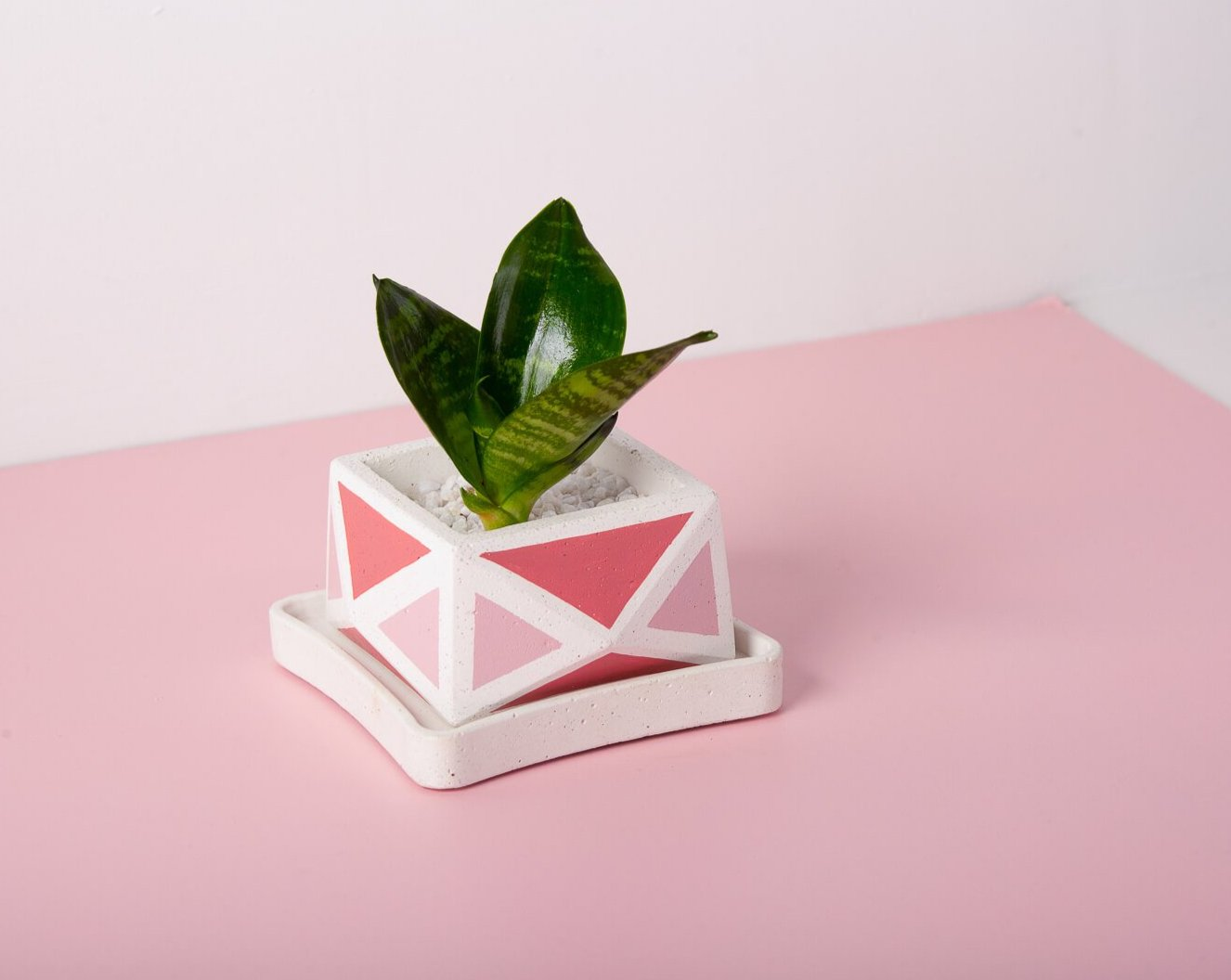 Concrete Crystal Planter - Pink Invertrix Collection - Eliteearth