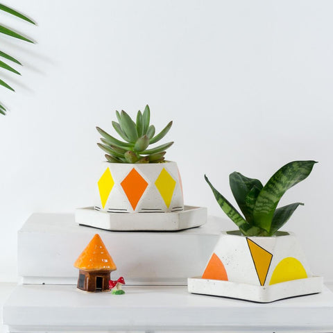 Concrete Diamante & Glittery Bowl Planter Combo Avant Garde Collection