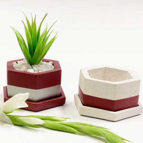 Concrete Hexafun Planter in Awakening - Asian Paints <br> Colour of the Year 2019 - Eliteearth