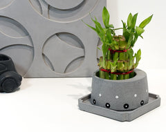 Concrete Cracker Barrel Planter - Eclipse Collection - Eliteearth
