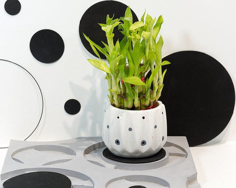 Concrete Icosa Planter - Eclipse Collection - Eliteearth