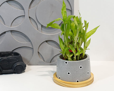 Concrete Cavern Planter - Eclipse Collection - Eliteearth