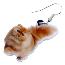 Load image into Gallery viewer, Acrylic Fluffy Fatty Cat Earrings Dangle Drop Cute Brown Animal Jewelry For Women Girls Kids Pets Gifts