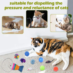 21Pcs/Set Cat Teaser Channel Ball Plush Toys Set for Pet