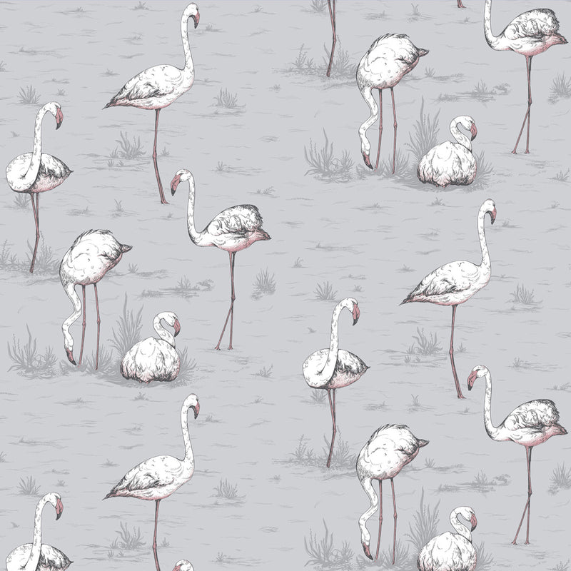 Carta da Parati - FLAMINGOS