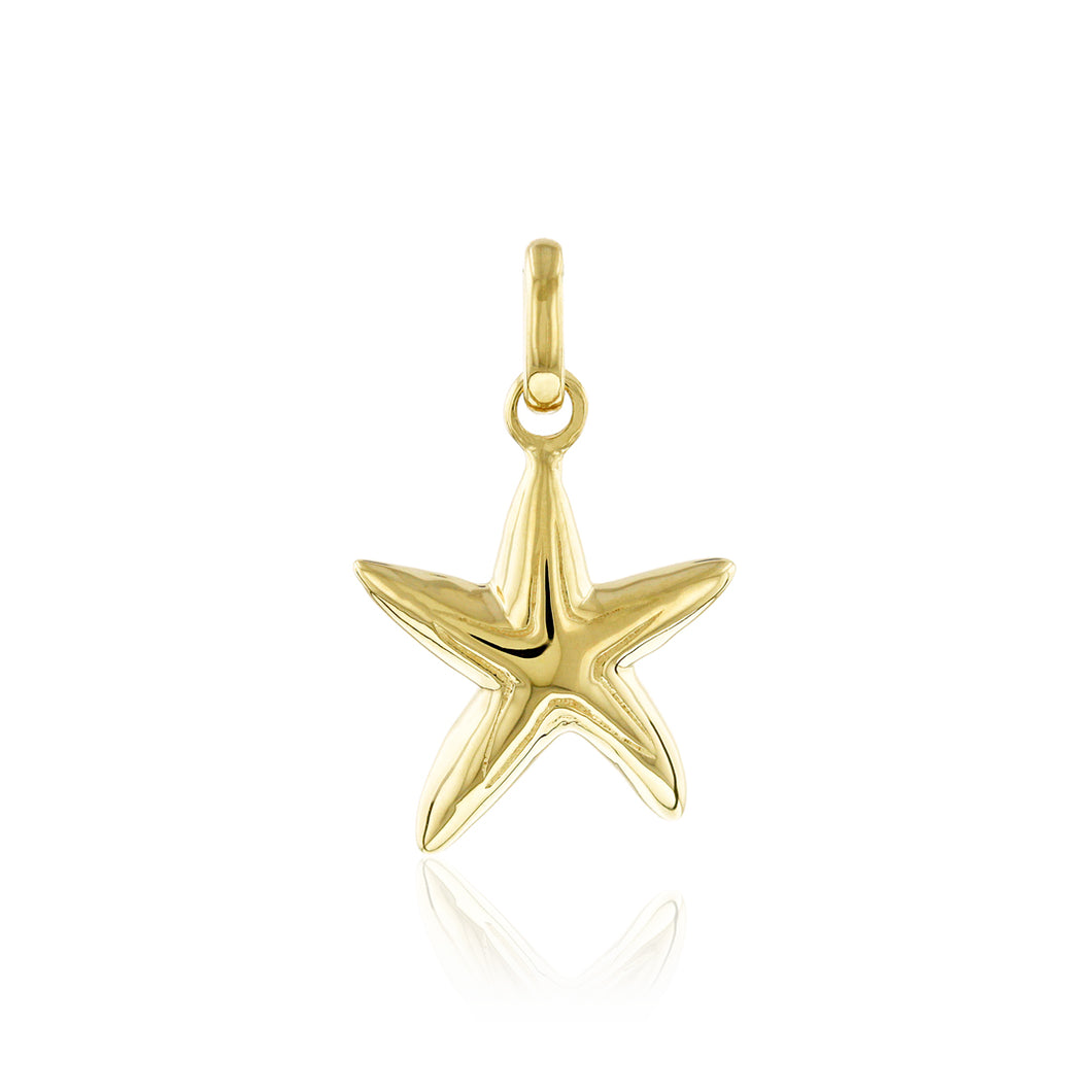 Small Starfish Pendant - Philip Rickard