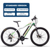 Liro 29 inch Electric Mountain Bike