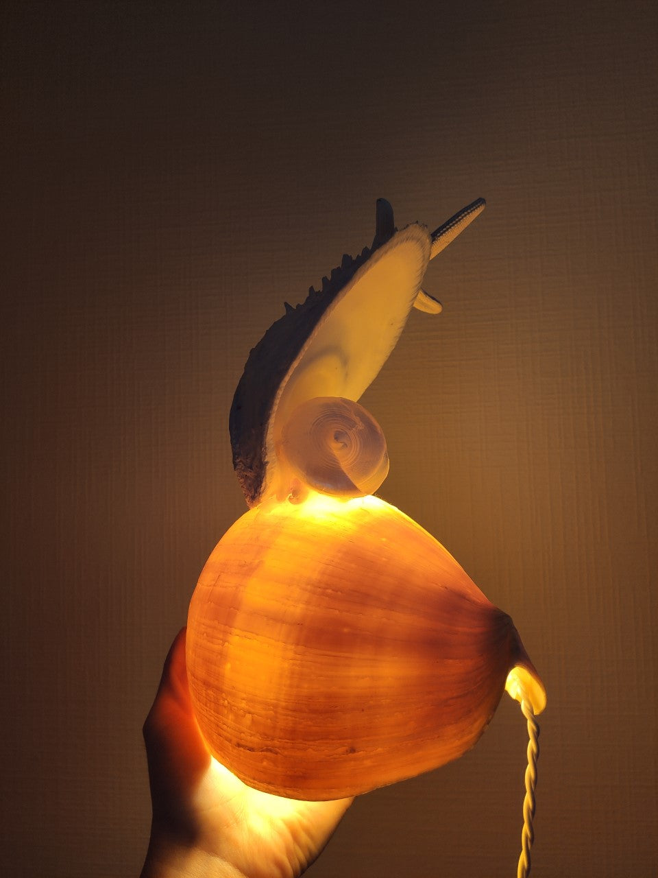 NATURAL LAMP NO.6