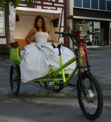 Cargo bike converted to electric with eZee kit