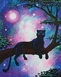 Cosmic Panther I Design Instructions