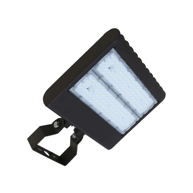 MULTI-MOUNT FLOOD LIGHT