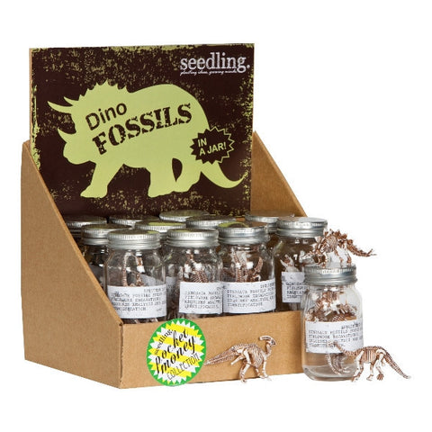 Dino Fossils in a Jar! ( Set of 12 )