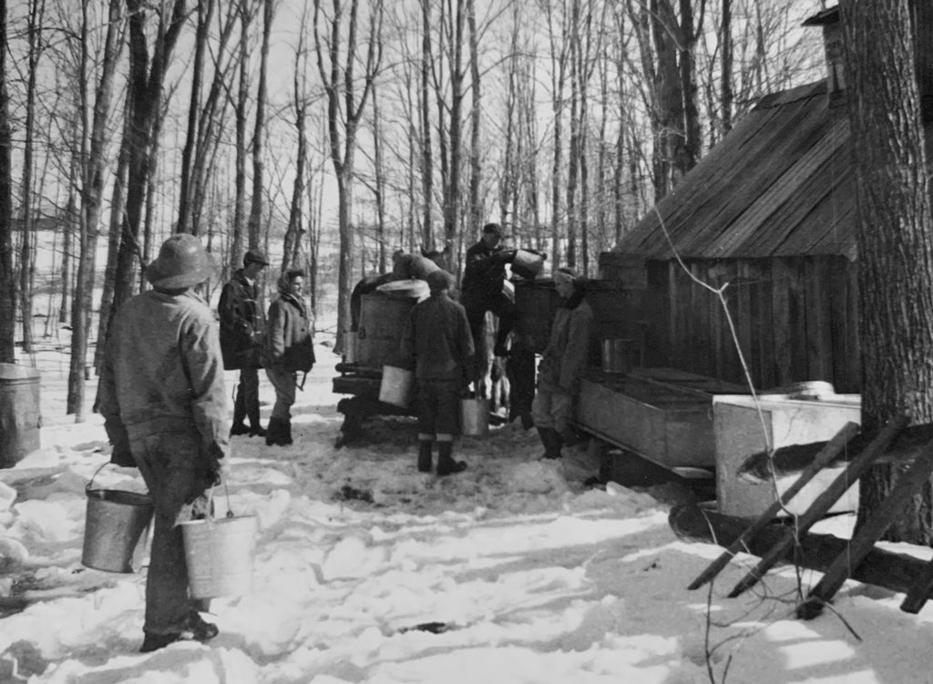 The Palmateer Sugar Bush was first tapped in the early 1940's by Stephen's grandfather, Ross Palmateer. Back then it was tapped using the old fashioned spoil and bucket.