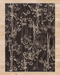 Montrose Rug | Rugs For Sale Outlet
