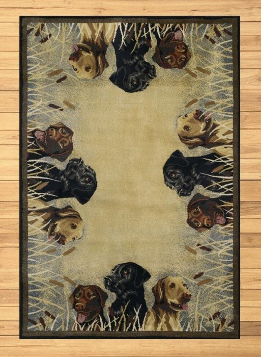 Lab Multi Rug | Rugs For Sale Outlet
