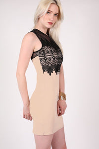 Lace And Mesh Trim Sleeveless Bodycon Dress in Stone 1