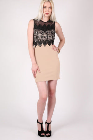 Lace And Mesh Trim Sleeveless Bodycon Dress in Stone 4